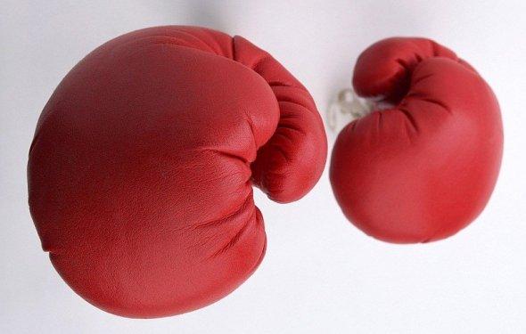 Как выбрать боксерские
